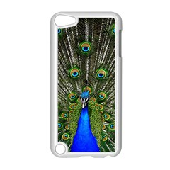 Peacock Apple Ipod Touch 5 Case (white)
