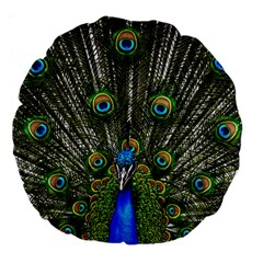 Peacock 18  Premium Round Cushion
