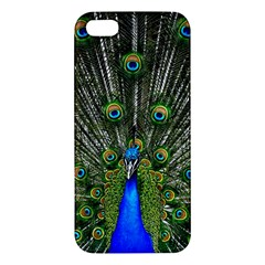Peacock iPhone 5 Premium Hardshell Case