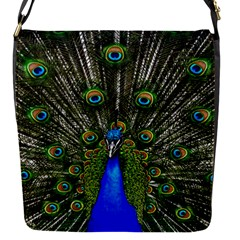 Peacock Removable Flap Cover (Small)