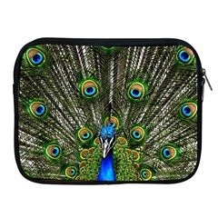 Peacock Apple Ipad 2/3/4 Zipper Case