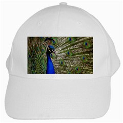 Peacock White Baseball Cap