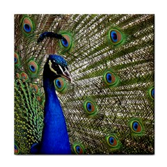 Peacock Ceramic Tile