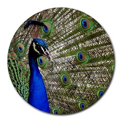 Peacock 8  Mouse Pad (round)