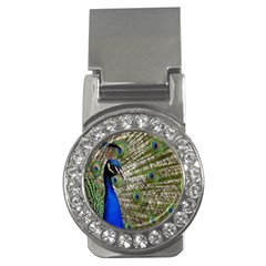 Peacock Money Clip (CZ)