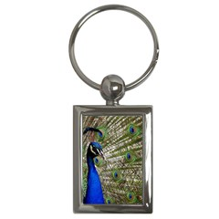 Peacock Key Chain (Rectangle)
