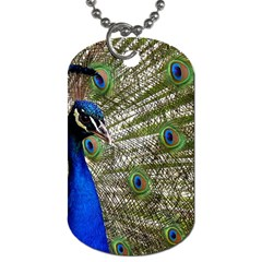 Peacock Dog Tag (One Sided)