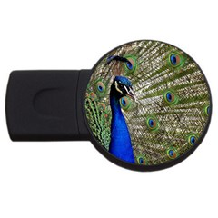 Peacock 2gb Usb Flash Drive (round)