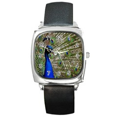 Peacock Square Leather Watch