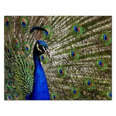Peacock Jigsaw Puzzle (Rectangle)