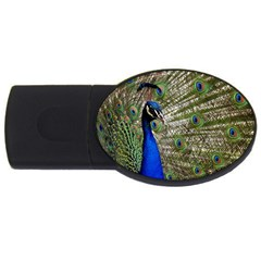 Peacock 4GB USB Flash Drive (Oval)