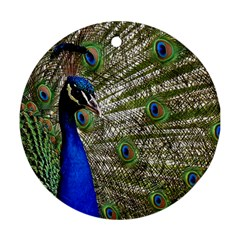 Peacock Round Ornament (Two Sides)