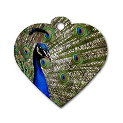 Peacock Dog Tag Heart (one Sided)