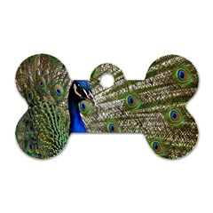 Peacock Dog Tag Bone (two Sided)