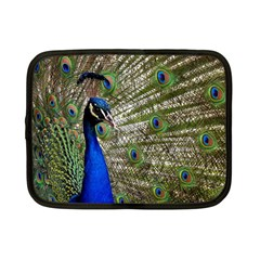 Peacock Netbook Case (small)
