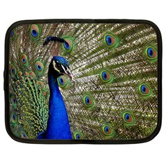 Peacock Netbook Case (Large)