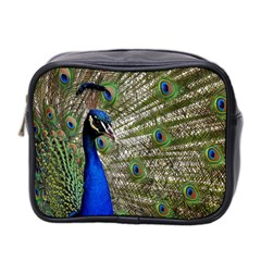 Peacock Mini Travel Toiletry Bag (Two Sides)