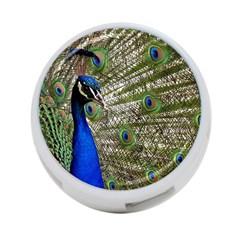 Peacock 4-Port USB Hub (Two Sides)