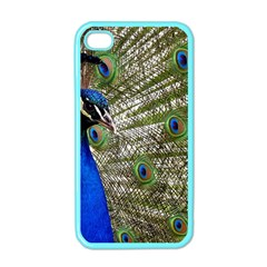 Peacock Apple iPhone 4 Case (Color)