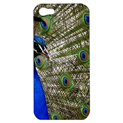 Peacock Apple iPhone 5 Hardshell Case