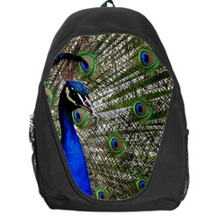 Peacock Backpack Bag
