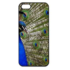 Peacock Apple Iphone 5 Seamless Case (black)