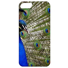 Peacock Apple Iphone 5 Classic Hardshell Case