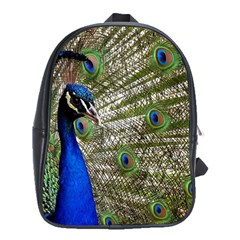Peacock School Bag (xl)