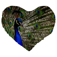 Peacock 19  Premium Heart Shape Cushion