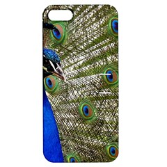 Peacock Apple Iphone 5 Hardshell Case With Stand
