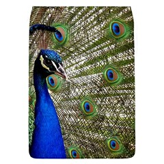 Peacock Removable Flap Cover (Large)