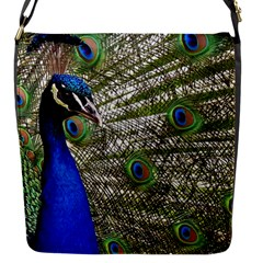 Peacock Flap closure messenger bag (Small)