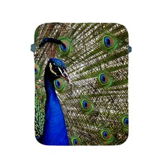 Peacock Apple Ipad 2/3/4 Protective Soft Case