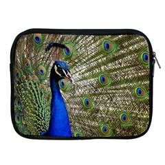 Peacock Apple Ipad 2/3/4 Zipper Case