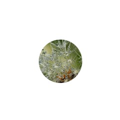 Dandelion 1  Mini Button Magnet