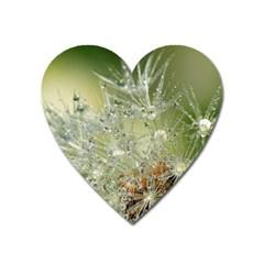 Dandelion Magnet (Heart)