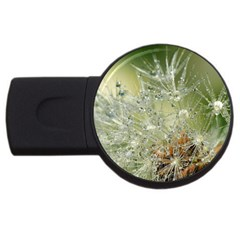 Dandelion 4gb Usb Flash Drive (round)