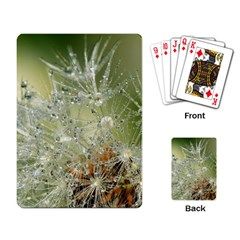 Dandelion Playing Cards Single Design