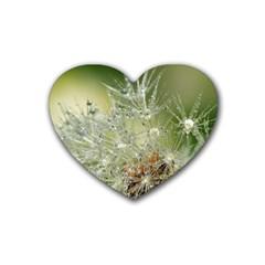 Dandelion Drink Coasters (Heart)