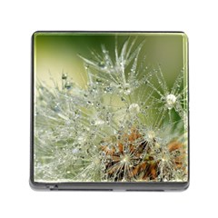 Dandelion Memory Card Reader With Storage (square)