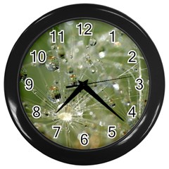 Dandelion Wall Clock (Black)