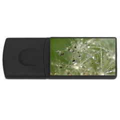 Dandelion 2GB USB Flash Drive (Rectangle)