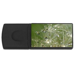 Dandelion 4GB USB Flash Drive (Rectangle)