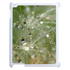 Dandelion Apple iPad 2 Case (White)