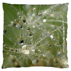 Dandelion Large Cushion Case (Two Sided)