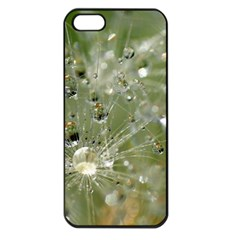 Dandelion Apple iPhone 5 Seamless Case (Black)