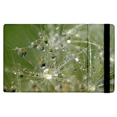 Dandelion Apple iPad 3/4 Flip Case