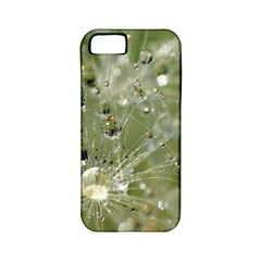 Dandelion Apple Iphone 5 Classic Hardshell Case (pc+silicone)