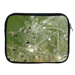 Dandelion Apple iPad 2/3/4 Zipper Case
