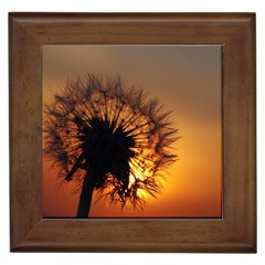 Dandelion Framed Ceramic Tile